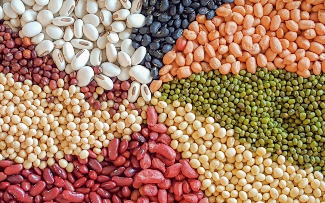 From Meat to Meatless, Here's How to Satisfy Your Protein Requirements